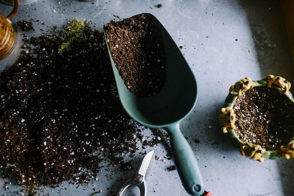 Mijn 5 handigste tuinhulpjes