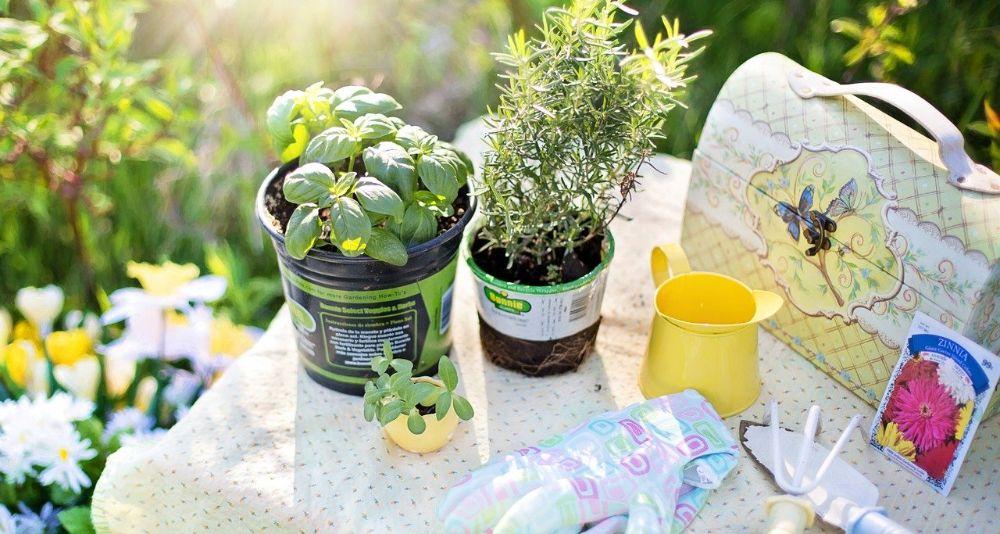 duurzame activiteit tuinieren