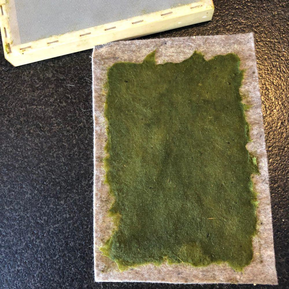 Papier maken van gras