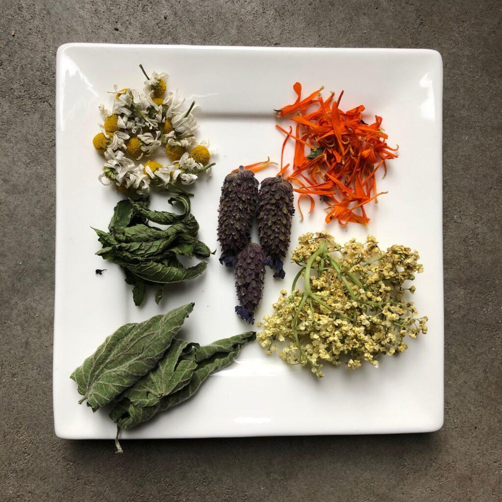 verschillende soorten gedroogde thee uit eigen tuin