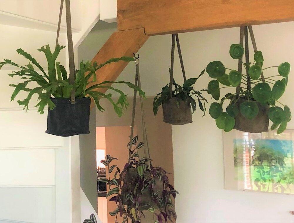 Kom tot rust met planttherapie